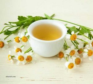 گیاه دارویی بابونه / Chamomile/ چای بابونه