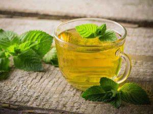 نعناع - گیاه دارویی نعناع - چای نعناع