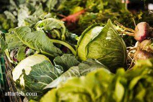 سم زدایی بدن با سبزیجات پهن برگ