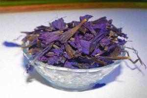 خواص گل گاوزبان در طب سنتی