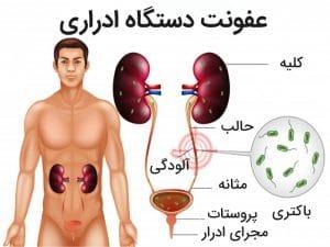 عفونت کلیه چیست